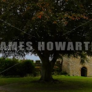 ENGLAND – CIRCA 2011: Garden tree at Penshurst Place Castle. - Actor Stock Footage