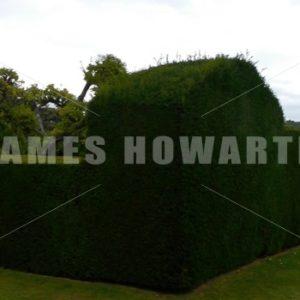 ENGLAND – CIRCA 2011: Pan past gardens at Penshurst Place. - Actor Stock Footage