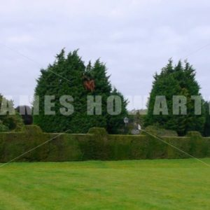 ENGLAND – CIRCA 2011: Pan to a large english house. - Actor Stock Footage