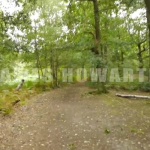 ENGLAND – CIRCA 2011: Point of view walking through forest. - Actor Stock Footage
