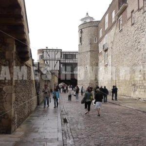 ENGLAND – CIRCA 2011: Walls inside Windsor Castle. - Actor Stock Footage